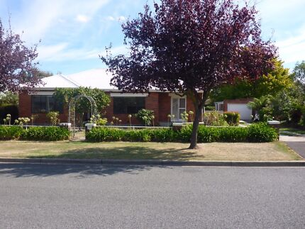 Lovely Longford home  3 bedrooms Outside pet considered $345 pw