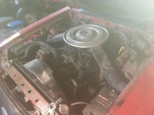 84 Mustang GT