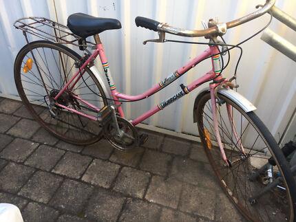 Lady bike good for man Hurricane 12 banger
