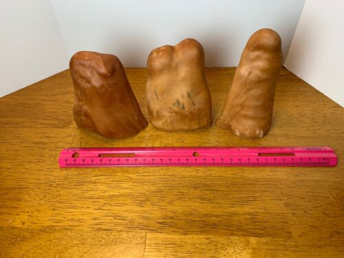 """Lot of 3 Fat Cypress Knees 4"""" to 5"""""""
