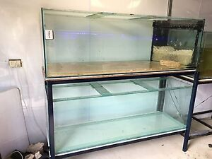2 fish tanks 6x2x2 on metal stand Atwell Cockburn Area Preview