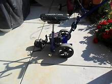 electric golf buggy Rosebud West Mornington Peninsula Preview
