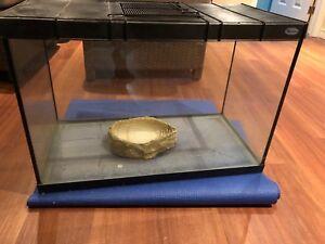 Black rectangular reptile tank
