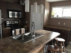 Laminate countertops and double stainless steel sink for sale