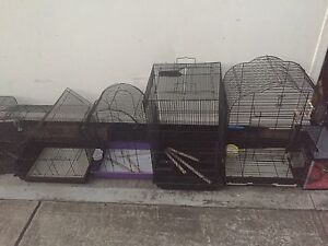 6cages Panania Bankstown Area Preview
