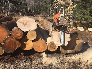 Chainsaw/Skidder operator needed/wanted