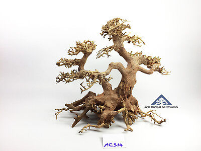 Bonsai Driftwood Tree for Aquarium Moss Fish Shrimp Planted Tank -Size L- AC314