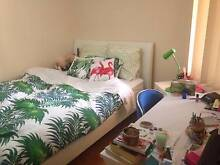 Sharehouse Room Available for Rent-Lambton Lambton Newcastle Area Preview