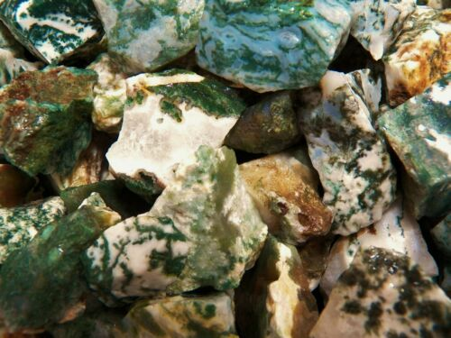 1000 Carat Lots of Green Tree Agate Rough - Plus a FREE Faceted Gemstone