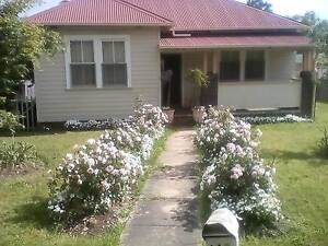 Great cottage to share Armidale Armidale City Preview