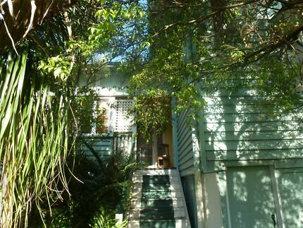 Share Female Owner's Leafy House Fairfield Brisbane South West Preview
