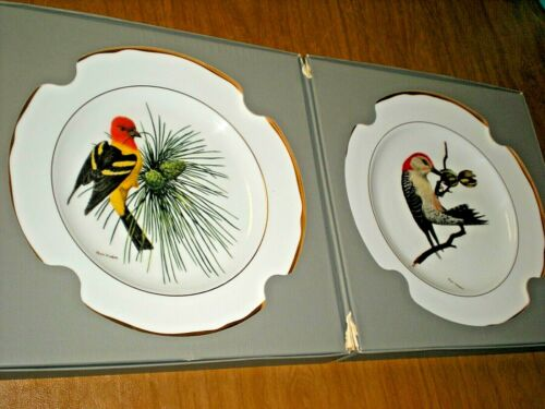 Collector SPODE Plates - American Songbird Series - Limited Edition, by Ray Harm