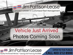 2014 Ford Transit Connect XL Cargo w/shelves and divider Dual Sl