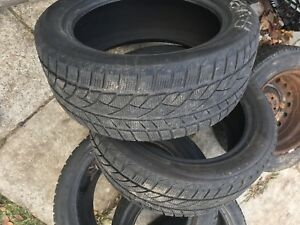 Evergreen Winter Tires 225/50R17