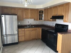 Full kitchen cabinets and sink, countertop