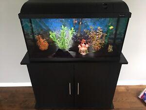 Aquarium 25 gallons