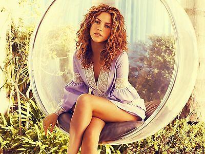 Shakira Unsigned 8x10 Photo (8)