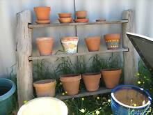RUSTIC WOODEN PLANT STAND & POTS Bassendean Bassendean Area Preview
