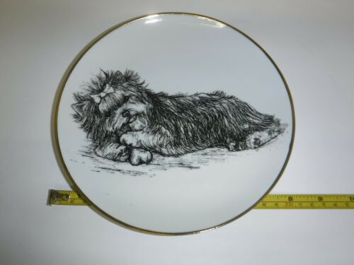 Yorkshire Terrier Yorkie Dog Plate Gold Trim