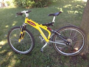 Mint condition specialized  Downhill mountain bike