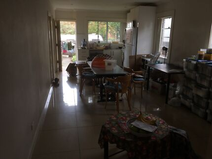 1 Room in Eastlakes for Rent