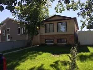 3 bedroom Available Nov 1