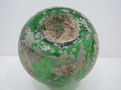 11.7 inch Tall Barnacle & Coral Encrusted Bi-mold Glass Float -(X1366)