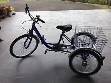 Viking tricycle Cooroy Noosa Area Preview