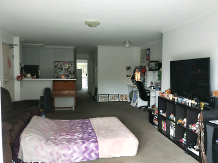 Wanted: Lrg Apartment for Rent btwn Surfers Paradise and Broadbeach