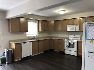 Kitchen doors and drawer faces