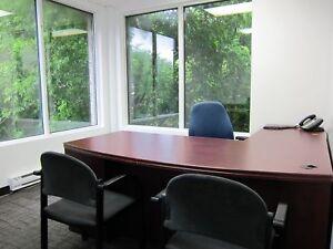Service de Bureau Virtuel / Professional Virtual Office