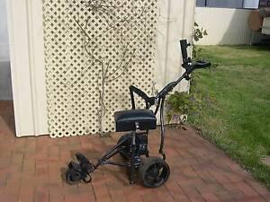 Electric golf buggy Temora Temora Area Preview