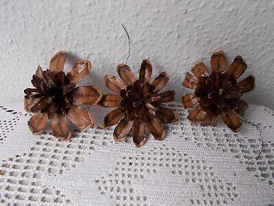 Zapfenblüten - Handarbeit für Türkränze und Ähnliches