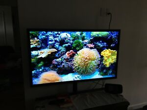 "52"" Samsung LED smart TV"