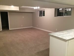 Legal basement suite  Edmonton Edmonton Area image 4