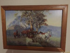 Darcy Doyle Horses Framed Print Schofields Blacktown Area Preview