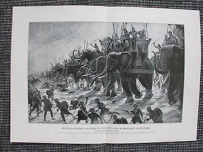 Hannibal Elefanten Schlacht bei Zawa gegen Römer202 v. Chr. DRUCK von 1906