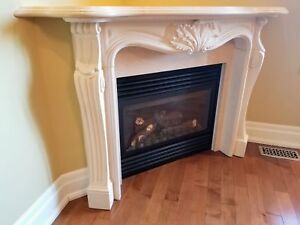 Napoleon gas fireplace with mantel