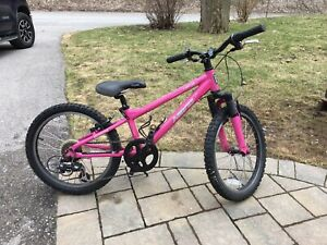 "Girls 20"" Haro mountain bike"
