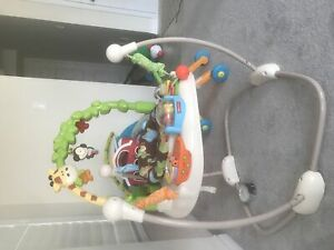 Fisher Price Jumperoo/Bouncer