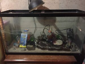 Fish/turtle tank - approx 50 gallons