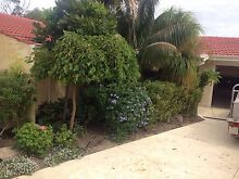 Quality Gardens Hillarys Joondalup Area Preview