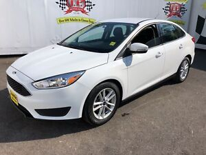 2017 Ford Focus SE, Automatic, Back Up  Camera, 26, 000km