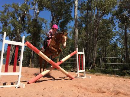 Fun, quality and skill building riding lessons available! Karragullen Armadale Area Preview