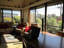 LF 30-50 y/o MATURE MALE! $130 A WEEK INCLUDING BILLS Mount Waverley Monash Area Preview