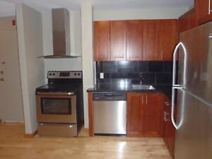 Great Bachelor Apartment  in Downtown Kingston