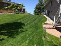 Lawn mowing & Landscaping