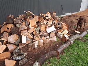 Fire wood - trailer load $70 each Morphett Vale Morphett Vale Area Preview
