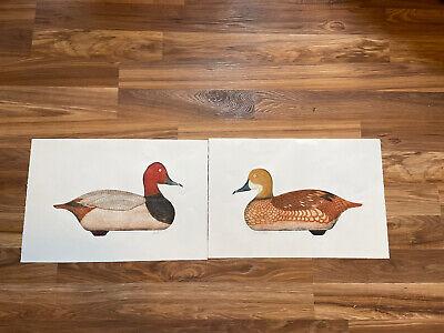 1965 Arthur Nevin Pencil Signed Red Head Drake & Hen Decoy Both # 95/150