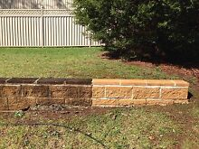 Pressure washing cleaning - paths, driveways, walls Bargo Wollondilly Area Preview